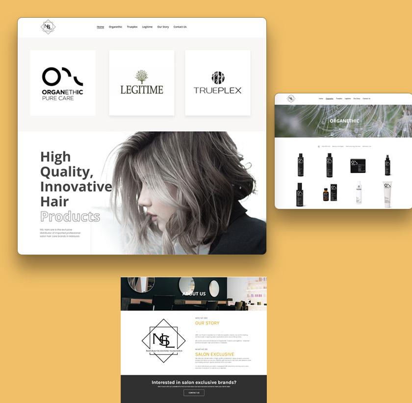 dstt-portfolio-nsl-hair-care